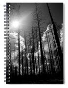 Burn Forest Spiral Notebook