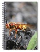 Burn Pile Bee Spiral Notebook