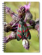 Burnett Moth Spiral Notebook