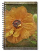 Burnished Poppy Spiral Notebook