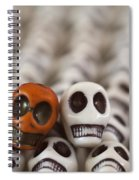 Burnt Orange And White Spiral Notebook