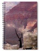 Burnt Tree Spiral Notebook