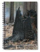 Burnt Tree Trunk Spiral Notebook