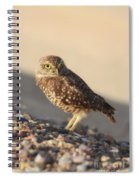 Burrowing Owl II Spiral Notebook