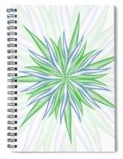 Burst Spiral Notebook