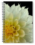Burst Of Life Spiral Notebook