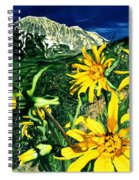 Burst Of Summer Spiral Notebook