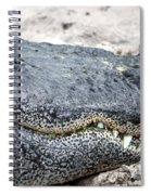 Busch Gator Spiral Notebook