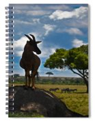 Bushbuck Guard Of The Mound   Spiral Notebook