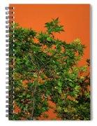 Bushfire Skies Spiral Notebook