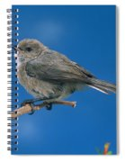 Bushtit Spiral Notebook