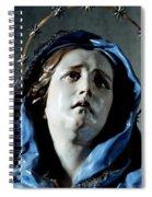Bust Of Painful Virgin Spiral Notebook