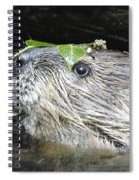 Busy Beaver Spiral Notebook