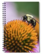 Busy Bee On Cone Flower Spiral Notebook