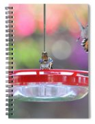 Busy Day At The Feeder Spiral Notebook