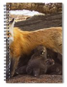 Busy Mommy Spiral Notebook
