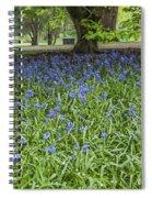 Bute Park Bluebells Spiral Notebook