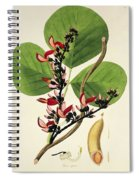 Butea Superba Spiral Notebook