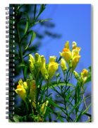 Butter And Egg Wildflower Spiral Notebook