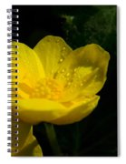 Buttercup And Dew Drops Spiral Notebook
