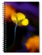 Buttercup Baby... Spiral Notebook