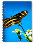 Butterflies And Blue Skies Spiral Notebook