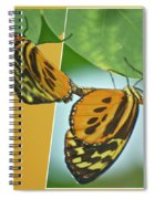 Butterflies Mating Out Of Bounds Spiral Notebook