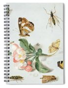 Butterflies Moths And Other Insects With A Sprig Of Apple Blossom Spiral Notebook