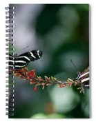 Butterflies On A Wire C Spiral Notebook