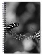 Butterflies On A Wire Spiral Notebook