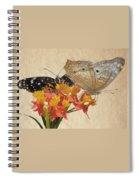 Butterflies Snd Flowers Spiral Notebook