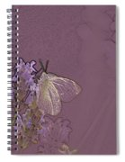 Butterfly 1 Spiral Notebook