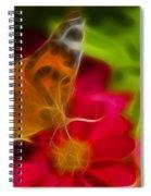 Butterfly-5430-fractal Spiral Notebook
