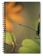 Butterfly And Flower Spiral Notebook