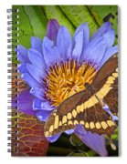 Butterfly And Lily Spiral Notebook