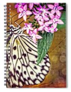 Butterfly Art - Hanging On - By Sharon Cummings Spiral Notebook