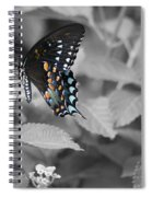 Butterfly Art Wings Together Spiral Notebook