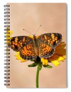 Butterfly Baby Spiral Notebook