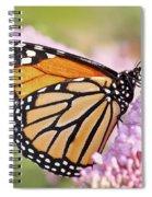 Butterfly Beauty-monarch II  Spiral Notebook
