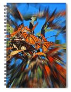 Butterfly Blast Spiral Notebook
