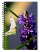 Butterfly - Cabbage White Spiral Notebook