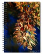 Butterfly Cluster Fractal Spiral Notebook