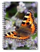 10088 Small Tortoiseshell Butterfly Spiral Notebook