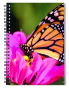Butterfly Cup Spiral Notebook
