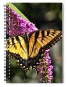 Butterfly - Eastern Tiger Swallowtail Spiral Notebook