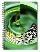 Butterfly Funnel Spiral Notebook