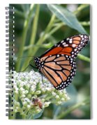 Butterfly Garden - Monarchs 07 Spiral Notebook