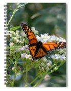 Butterfly Garden - Monarchs 09 Spiral Notebook