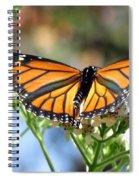 Butterfly Garden - Monarchs 13 Spiral Notebook