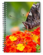 Butterfly Hanging Out On Wildflowers Spiral Notebook